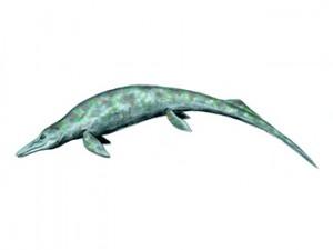 Thalattoarchon много наподобявал на външен вид на друг едър ихтиозавър от средния Триас - Cymbospondylus (на възстановката). Изображение: Nobu Tamura