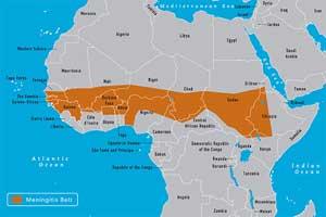 Менингитния пояс - зони с чести епидемии от менингококов менингит.