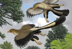 Илюстрация на ранни птици. Новото изследване сочи, че първите птици са използвали четири крайника с оперение за да се задържат във въздуха. Изображение: Carl Buell courtesy Jakob Vinther/Bristol University