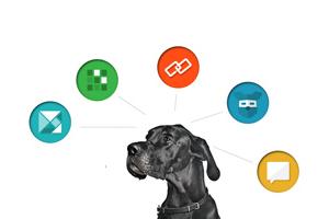 От началото на януари до сега в инициативата вече са се регистрирали над 2000 участника. Изображение: dognition.com