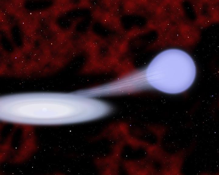 Художествена концепция за предполагаемия процес, който води до супернова Тип Iax: бялото джудже (център-ляво) засмуква хелий от синя хелиева звезда (център-дясно). Изображение: Christine Pulliam (CfA)