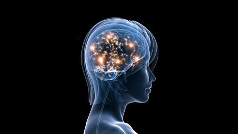 Прочуването на Файнбърг е последната фаза в триетапно изследване, продължило повече от 10 години и включващо над 3 500 ЕЕГ записа на мозъчна активност в течение на цяла нощ. Изображение: UC Davis