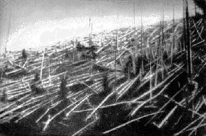 Тунгуската експлозия от 1908г. изравнява със земята гора простираща се на площ от 2000 кв. км
