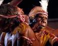 """<p>Мислейки си, че сме изправени пред големи проблеми, свързани с глобалното затопляне, археолозите предлагат да обърнем внимание за момент и на аборигените в Австралия, които е трябвало да се справят … <a href=""""http://www.nauteka.bg/sciences/archeology/kak-avstraliiskite-aborigeni-sa-se-spravili-s-lednikovata-epoha/"""" class=""""read_more"""">още</a></p>"""