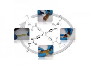 Полимерът се възстановява сам след срязване с нож. Илюстрация: Royal Society of Chemistry
