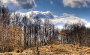 Гора в Чернобил. Снимка: Timm Suess (CC BY-NC-ND 2.0)