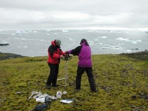 Учените сондират за проби с мъх. Снимка: Peter Boelen