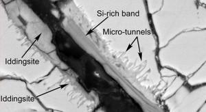Микро-тунелчета в структурата на Y000593. Снимка: НАСА