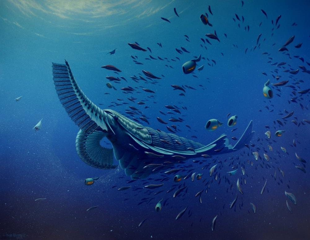 Реконструкция на древното, наподобяващо скарида, същество. Изображение: Rob Nicholls/University of Bristol