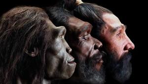 Откриха сечива, съществували половин милион години преди първите хора