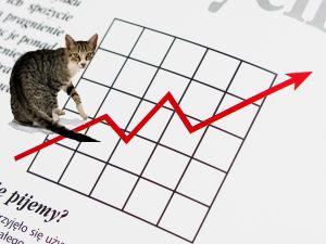 Експериментът потвърждава мнението на мнозина в бранша, които смятат, че пазарите са непредвидими и котка би имала същия успех в прогнозирането, колкото и финансов експерт