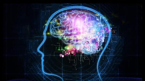 """""""Това е първото изследване в историята, което показва наличието на група от нервни клетки в човешкия мозък, която е специализирана в обработката на цифри"""", казва проф. Йозеф Парвизи от Станфорд. Изображение: Saad Faruque"""