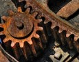 """<p>Австралийски учени, изучаващи строежа и работата на мозъка, са стигнали до извода, че със стареенето в него се нарушават метаболитните процеси, свързани с металите. Това може да доведе до тяхното … <a href=""""https://www.nauteka.bg/sciences/medicine/s-vuzrastta-mozukut-bukvalno-rujdyasva-otkriha-ucheni/"""" class=""""read_more"""">още</a></p>"""