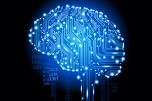 Учени се опитват да поставят основите на изкуствения интелект чрез масивна компютърна система, която преглежда милиони снимки и решава сама какво означават те.