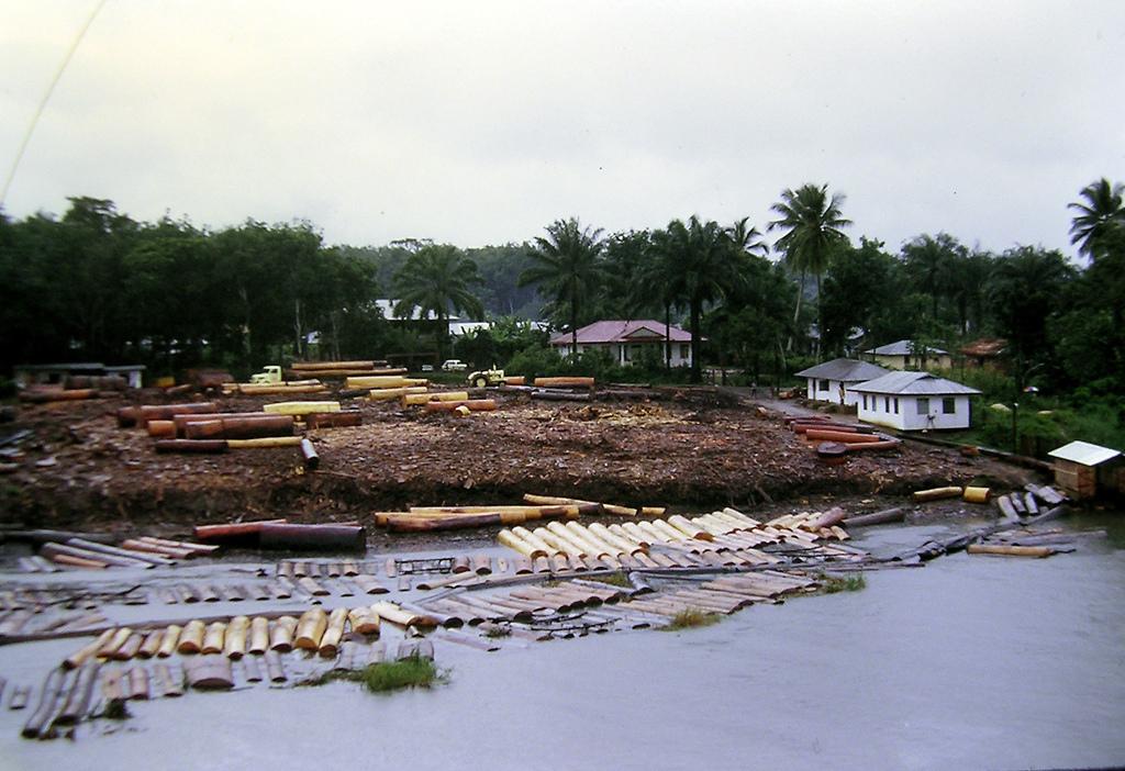 Делтата на река Нигер е много замърсена с петрол и въглеводороди. Снимка: Blacksmith Institute