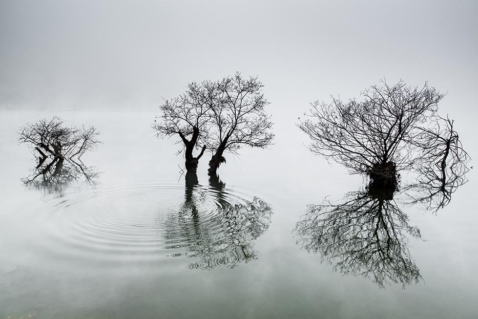 Границата между небето и водата в притихналото езеро се губи на тази прекрасна фотография. Снимка: © Dowon Choi, Korea, 1st place, Korea National Award, 2014 Sony World Photography Awards