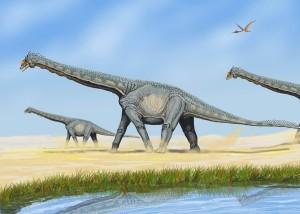 Завроподи аламозаври. Автор: DiBgd (GFDL Version 1.2)