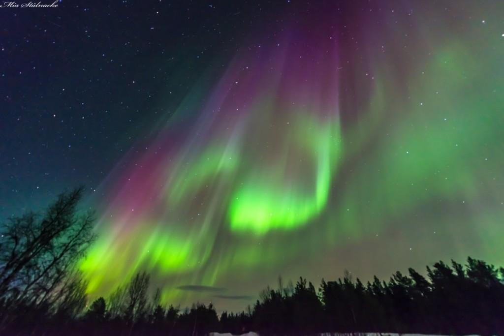Северното сияние над Швеция. Снимка: Mia Stålnacke