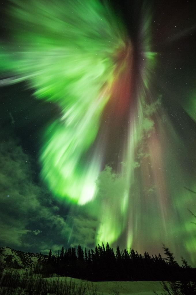 Сиянието над Аляска, САЩ (в галерията кликнете квадратчетата горе-вдясно за по-голям изглед). Снимка: Rex